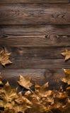 Kader van de herfstbladeren op houten raad Stock Afbeeldingen