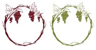 Kader van druiven Stock Fotografie