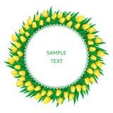 Kader van gele tulpen Royalty-vrije Stock Afbeelding