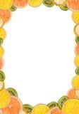 Kader van gesneden citrusvruchten Royalty-vrije Stock Foto
