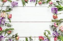 Kader van het patroon van droge bloemen op een witte houten achtergrond Hoogste mening De ruimte van het exemplaar Stock Afbeelding