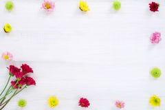 Kader van kleurrijke chrysantenbloemen wordt gemaakt op witte houten achtergrond die royalty-vrije stock afbeeldingen