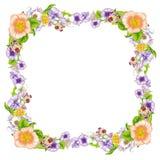 Kader van mooie wildflowers Royalty-vrije Stock Foto's