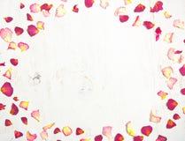 Kader van rode bloemblaadjes van roze, Royalty-vrije Stock Afbeelding