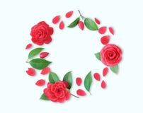 Kader van rode Cameliabloemen, bladeren en rode bloemblaadjes op witte bedelaars Royalty-vrije Stock Foto's