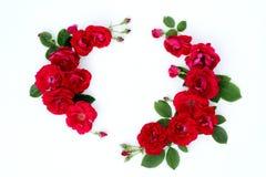 Kader van rode rozen op een witte achtergrond met ruimte voor tekst Stock Afbeeldingen