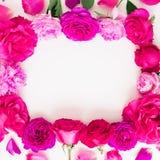 Kader van roze bloemen op witte achtergrond Bloemen samenstelling Vlak leg, hoogste mening Royalty-vrije Stock Foto