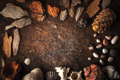 Kader van shells, koraal en steen op de donkere achtergrond Royalty-vrije Stock Afbeeldingen