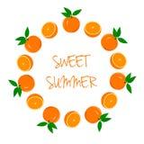 Kader van Sinaasappelen en Oranje Plakken Stock Afbeelding