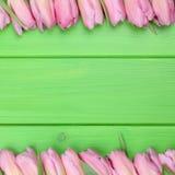 Kader van tulpenbloemen in de lente of moedersdag Stock Foto's