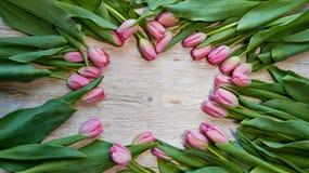 Kader van verse die tulpen op houten achtergrond worden geschikt Royalty-vrije Stock Afbeeldingen