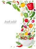 Kader van verse, rijpe, heerlijke die groenten in veganistsalade op witte achtergrond wordt geïsoleerd Gezonde natuurvoeding in e Stock Foto