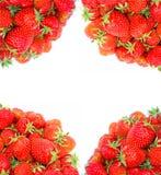 Kader van verse rode aardbeien op de geïsoleerde hoeken Stock Afbeelding