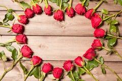 Kader van verse rozen Royalty-vrije Stock Foto