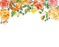 Kader van Watercolour het roze en gele bloemen met groene bladeren op witte achtergrond Bloemenbannermalplaatje voor om het even  vector illustratie