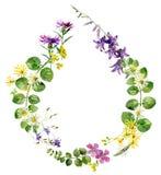Kader van wilde bloemen in de vorm van een daling stock illustratie