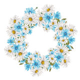 Kader van wildflowers Stock Afbeeldingen