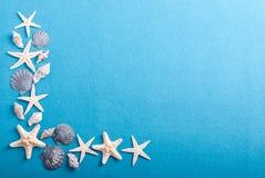 Kader van zeeschelpen op een blauwe achtergrond Stock Foto's