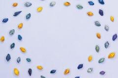 Kader van zeeschelpen op pastelkleur blauwe achtergrond De hoogste vlakke mening, legt, kopieert ruimte Van de overzeese de achte stock foto's
