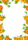 Kaderachtergrond met oranje pompoenen en groene bladeren Vector illustratie Royalty-vrije Stock Foto's