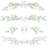Kadergrens, bloemen decoratief ornament met waterverfbosbessen Stock Afbeelding