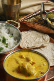 Kadhi Pakori - A dish from Gujarat Stock Photography
