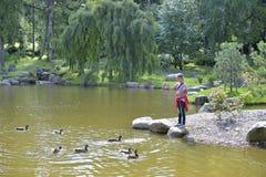 Kadriorg park Catherine's Valley in Tallinn, Estonia Royalty Free Stock Photos