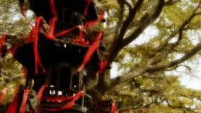 Kadzidłowego palnika i ginkgo drzewo w wiatrze, zabytki, antyki, kultura zdjęcie wideo