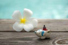 Kadzidłowy rożek lub gumowy beniamin z plumeria wodą w b i kwiatem zdjęcia royalty free