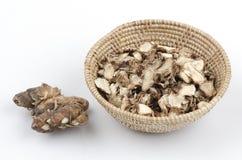 Kaempferia galanga, Sand Ginger, Aromatic Ginger, Resurrection Lily. Royalty Free Stock Image