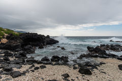Kaena punkt, Oahu Royaltyfri Fotografi