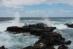 Kaena punkt, Oahu Royaltyfria Foton
