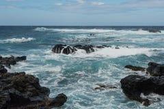 Kaena punkt, Oahu Arkivbild