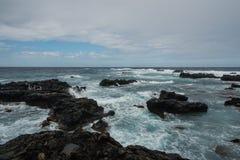 Kaena punkt, Oahu Arkivfoto