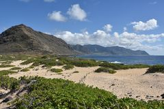 Kaena punktu stanu park Hawaje, Oahu Zdjęcia Royalty Free