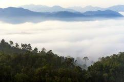 Kaeng Krachan National Park. Royalty Free Stock Images