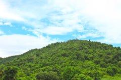 Kaengkrachan国家公园的岩石和树 库存照片