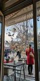 Kafé för BosnienSarajevo duvor royaltyfri foto