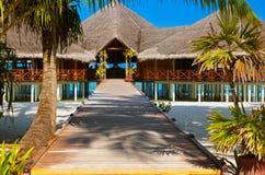 Kafé på den tropiska Maldiverna ön Royaltyfri Foto