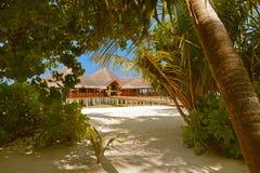 Kafé på den tropiska Maldiverna ön Royaltyfri Bild