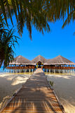 Kafé på den tropiska Maldiverna ön Royaltyfria Bilder