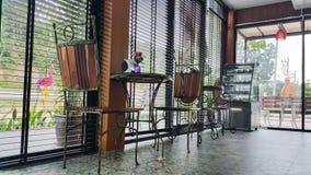 Kafékaffe Royaltyfria Foton