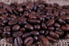 Kafe bean Royalty Free Stock Image