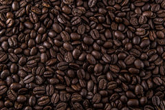 Kaffe Bean Background Texture Royaltyfri Bild
