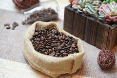 Kaffe Bean Bag Bottles och köttlika växter för kaktus fotografering för bildbyråer