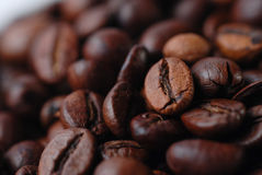Kaffe Bean Close Up Arkivfoton