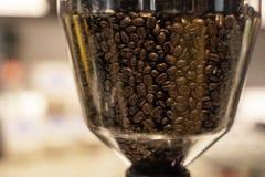 Kaffe Beand Arkivbild