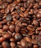 kaffe för 05 bönor Arkivbilder