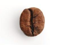 kaffe för 2 böna Arkivfoto