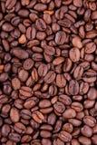 kaffe för bönabrownclose många upp Royaltyfri Foto